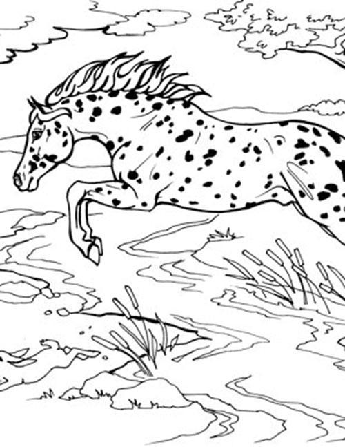 Breyer Horse Coloring Pages : breyer, horse, coloring, pages, Jumping, Horse, Coloring, BreyerHorses.com