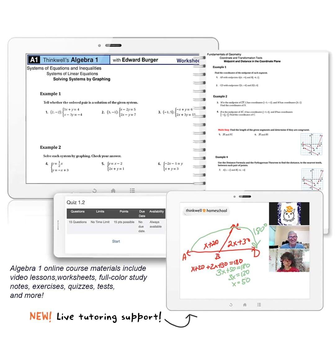 Algebra 1 Online Course   Thinkwell   Thinkwell Homeschool [ 1085 x 1080 Pixel ]