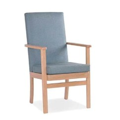 High Seat Chair For Elderly Slip Covers Dining Chairs Orthopaedic And Disabled Mobility World Fireside