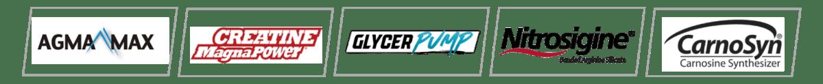 Fuel Pump Patented Ingredients