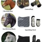 Equestrian Color Coordination Guide Equestroom