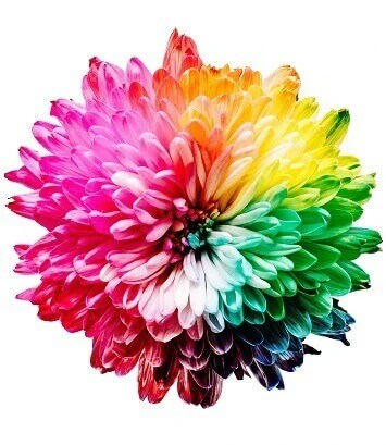 what is full spectrum