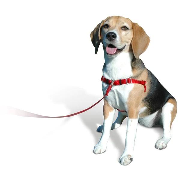 SENSEible No Pull Dog Harness  Black  PupLife Dog Supplies