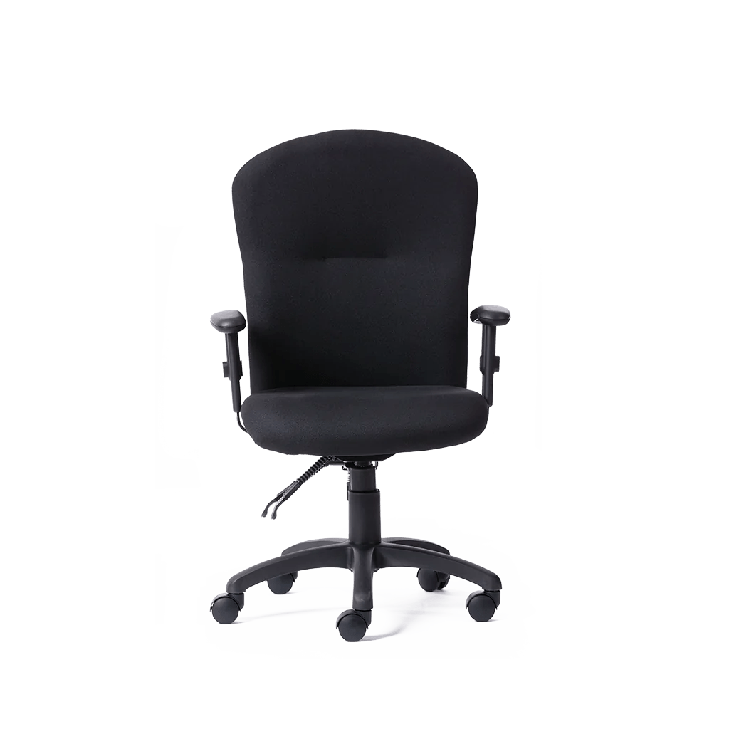back support office chairs south africa william sonoma chair covers ergonomic desks other furniture ergotherapy getone midback