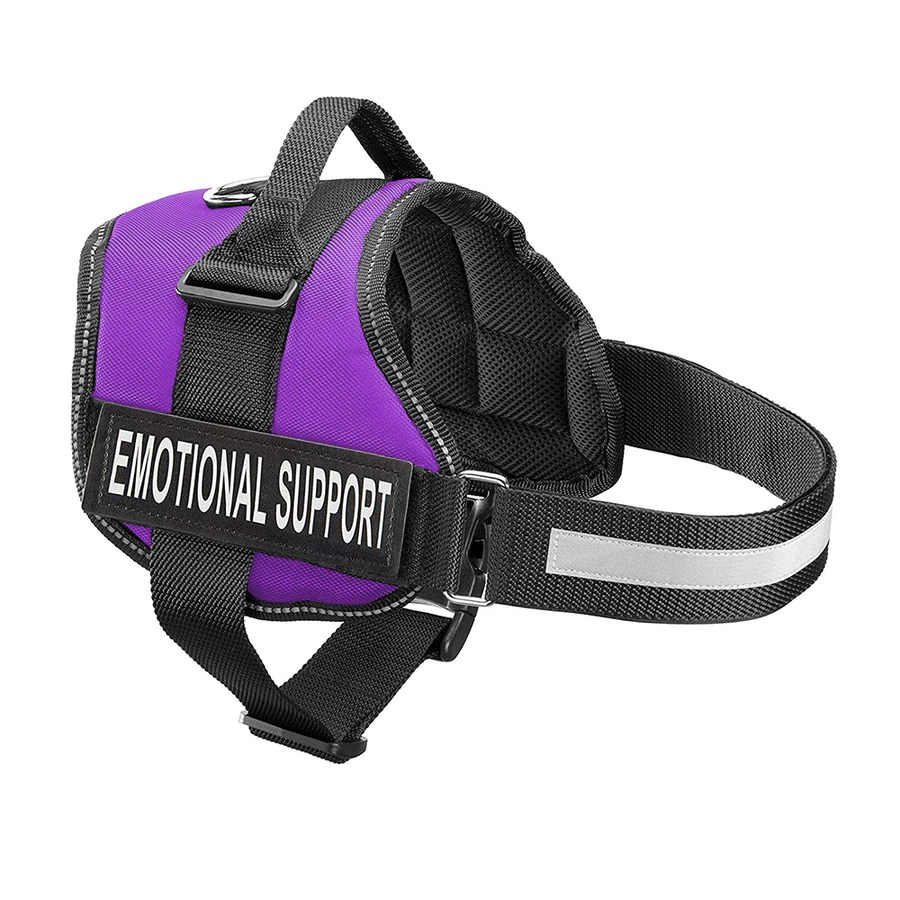 hight resolution of new all in one no pull dog harness