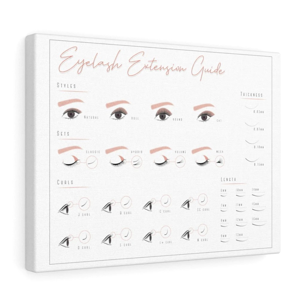 eyelash extension style guide wall art