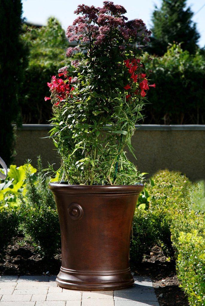 gardenstone solaris
