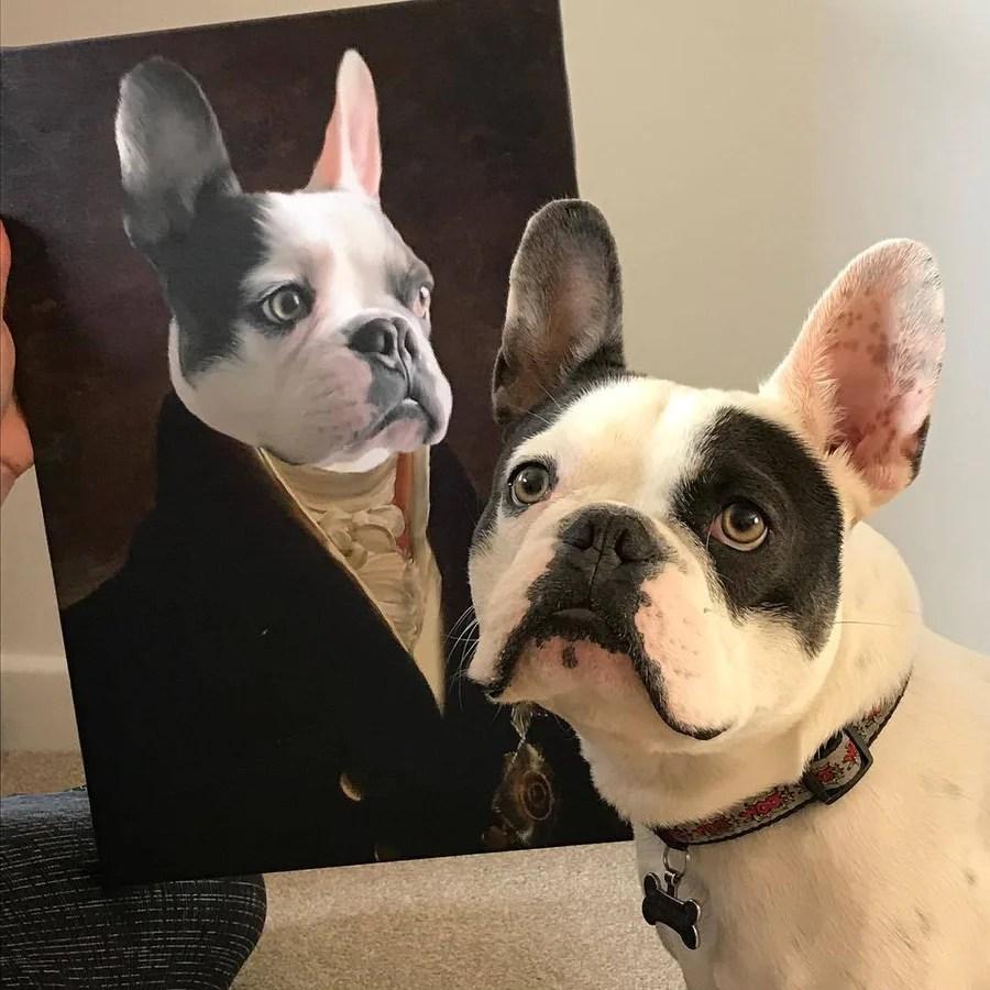 the count custom pet
