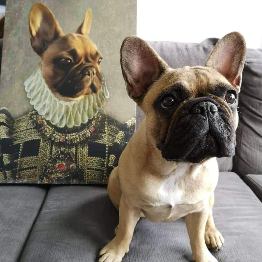 the dame custom pet