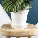 Buy This Italian Hand Made Glazed Plant Pot By Bergs Potter In White With National Delivery Online Beards Daisies
