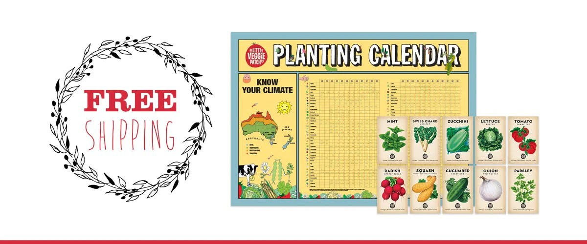 Our curated heirloom seed bundles to suit any season and planting calendar so you know when grow them also edible gardening growing food made easy rh littleveggiepatchco