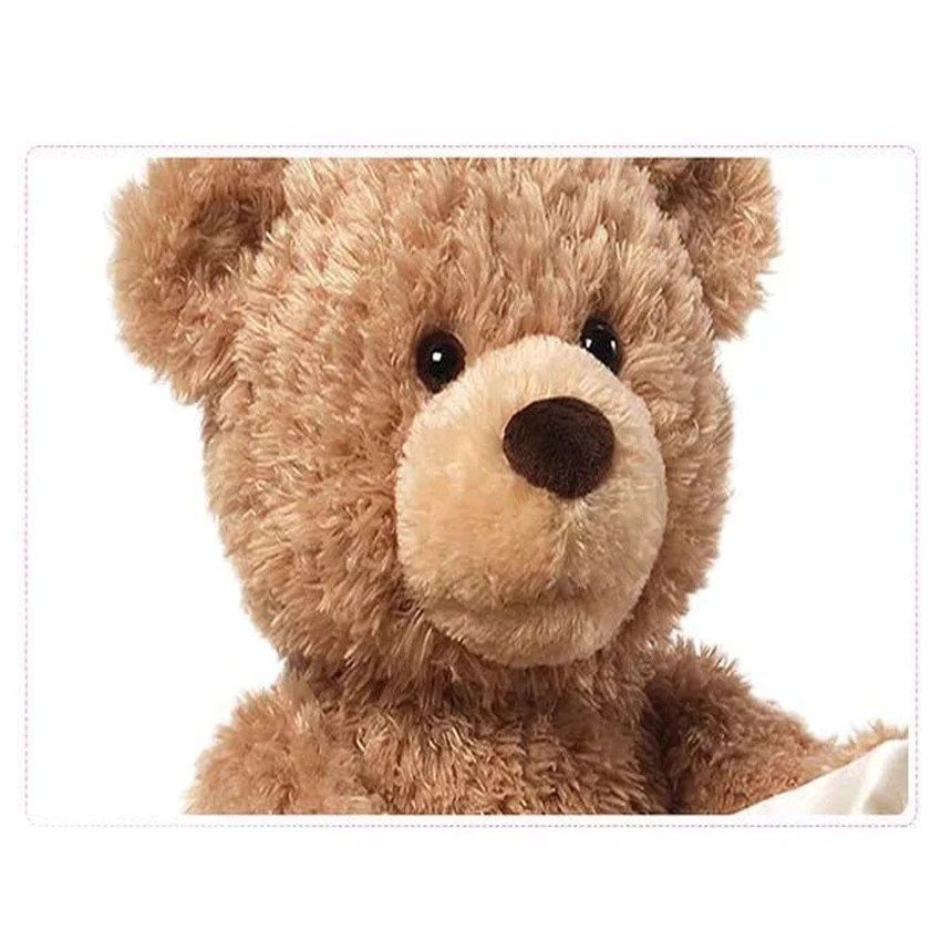 peek a boo teddy