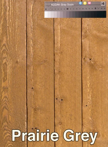 SemiTransparent Fence Stain by Standard Paints  Standard
