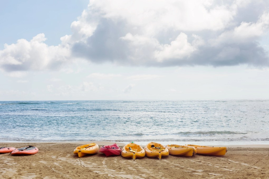 Image of a beach with kayaks lining the shore