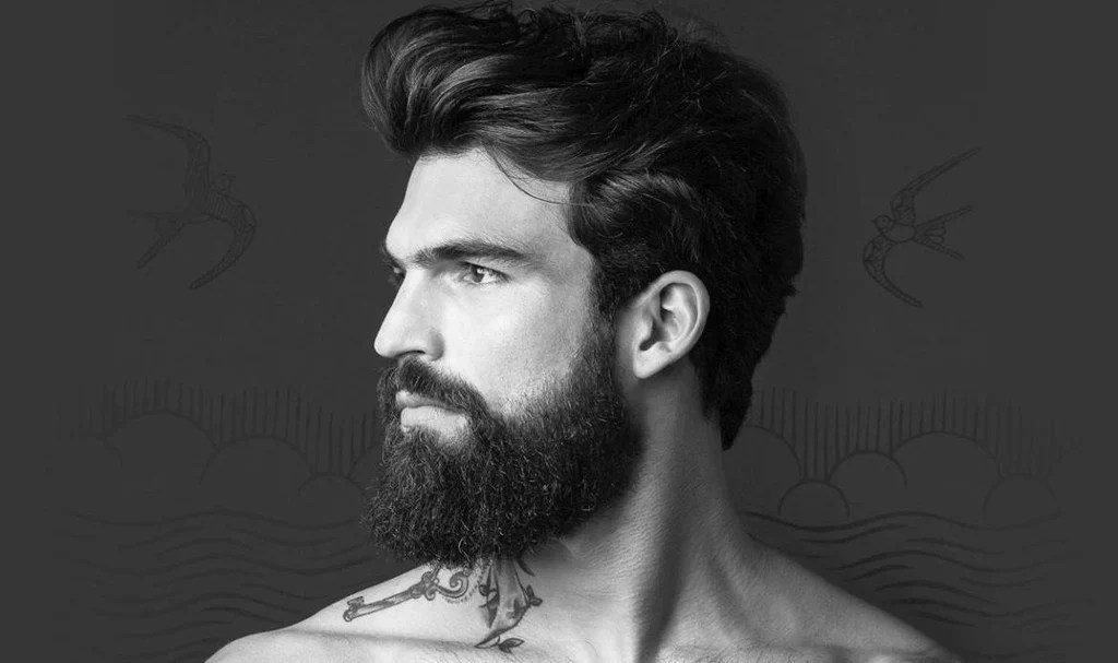 the top beard styles