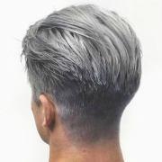 guide silver grey hair