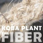 Koba plant fiber