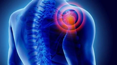 cbd reduces pain