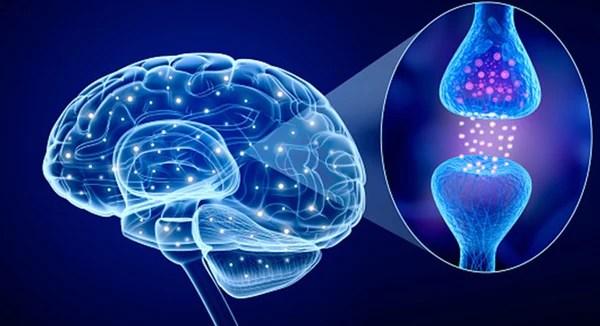 Parkinsons causes
