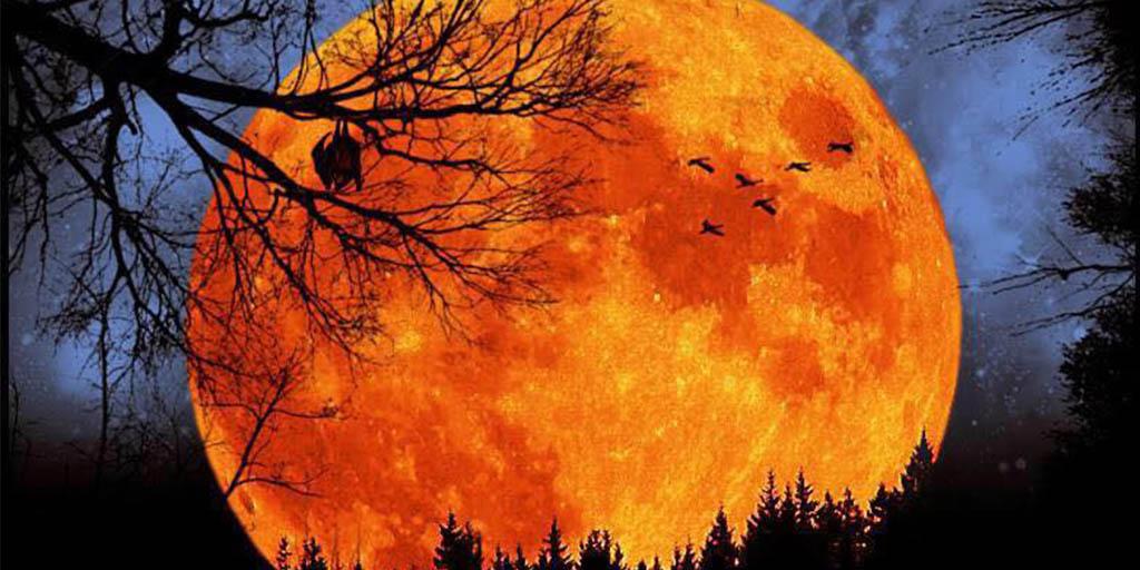 Free Fall Harvest Desktop Wallpaper Hillberry 2 Saves The Fall Music Scene Fayettechill