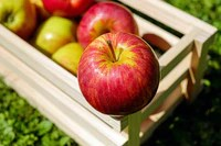 fruit, pomme rouge