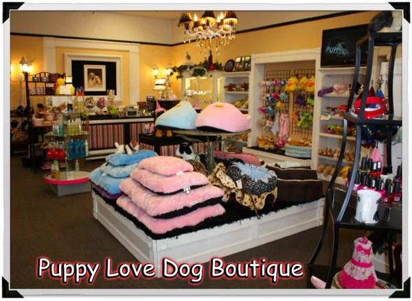 Dog Boutique Dog Store