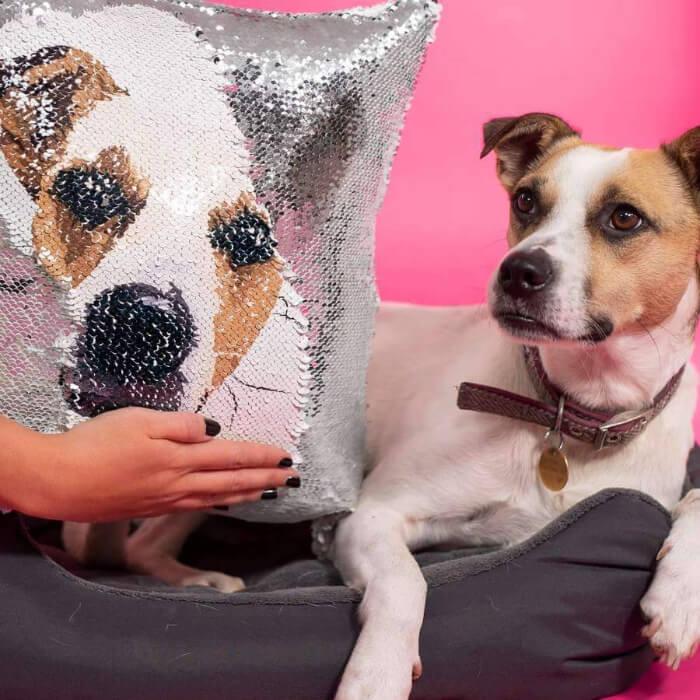 customized pet sequin pillow cover