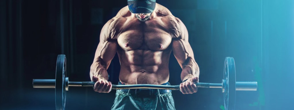 Fast Gains A Quick Start Muscle Building Workout Pla