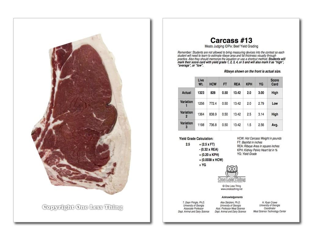 medium resolution of Beef Yield Grading