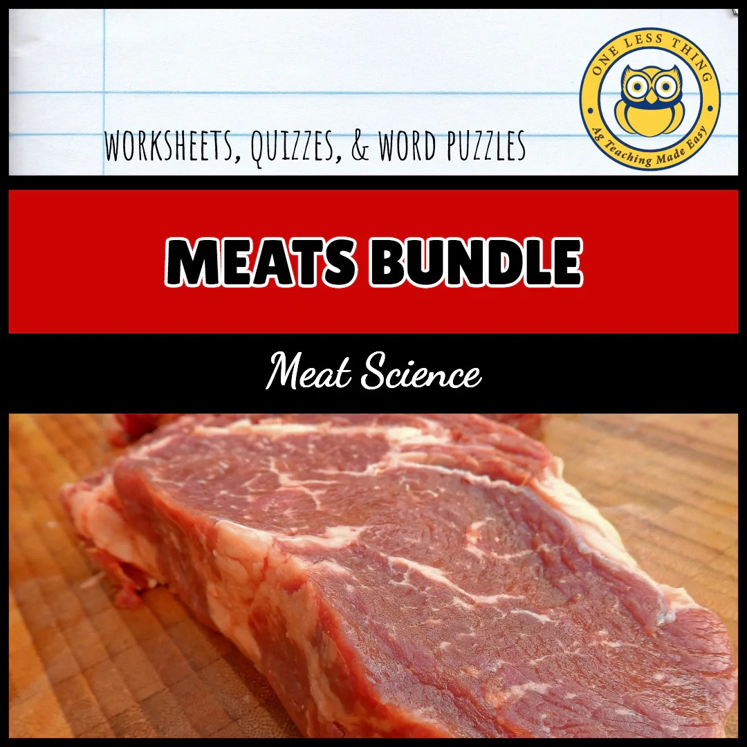 Meat Science Industry Worksheet and PowerPoint Bundle - One Less Thing [ 1080 x 1080 Pixel ]