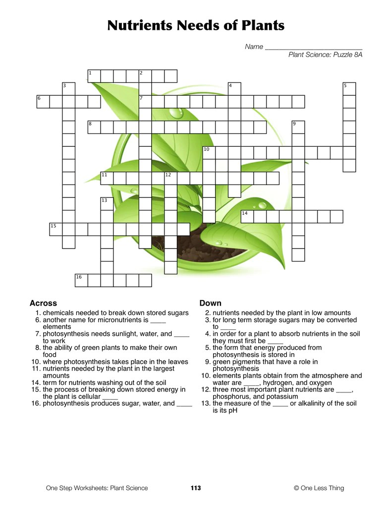 medium resolution of Plant Science