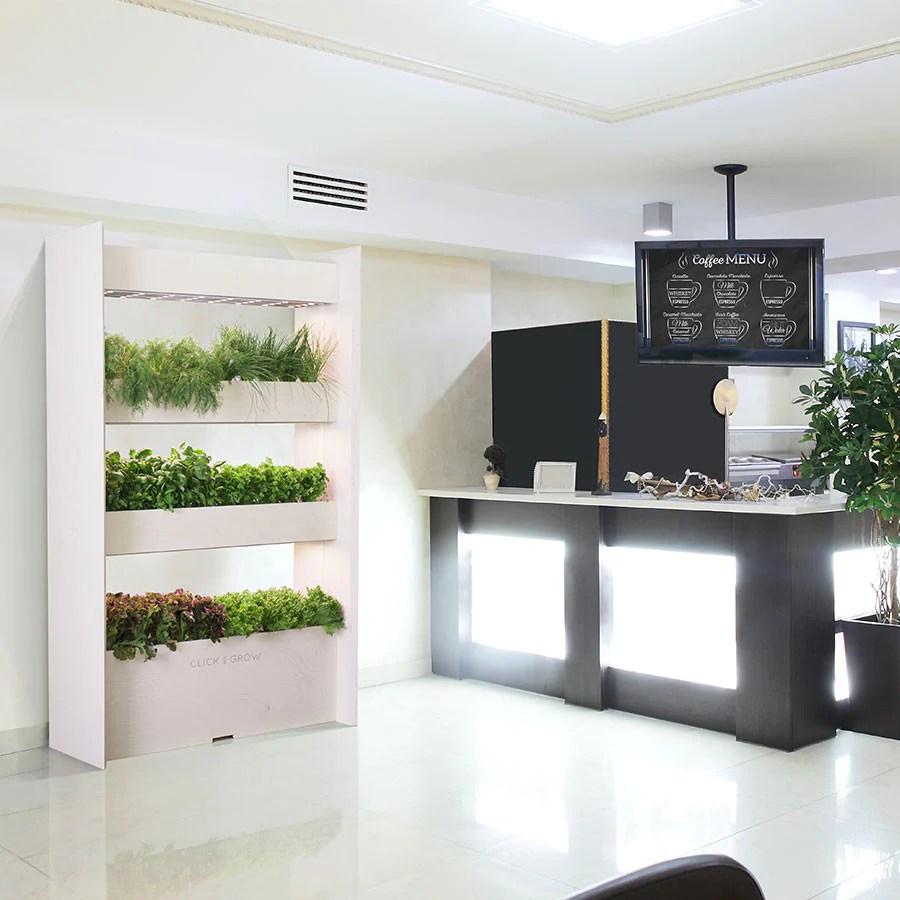 indoor vertical gardening