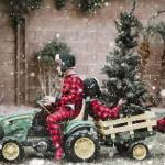 Family Christmas Photo Shoot Ideas Pretty Presets For Lightroom