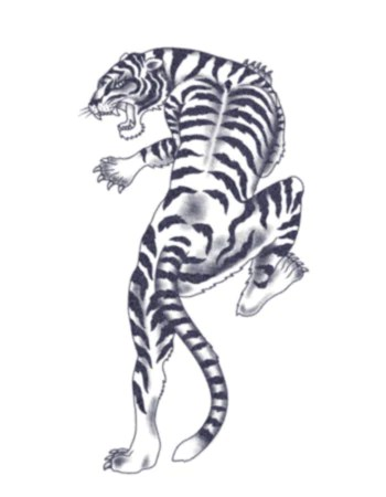 climbing tiger black and white