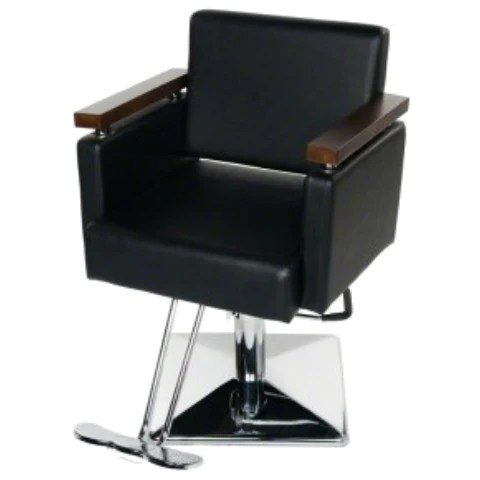 salon chairs for cheap target.com chair covers styling buy today fast shipping zurich beauty euro black