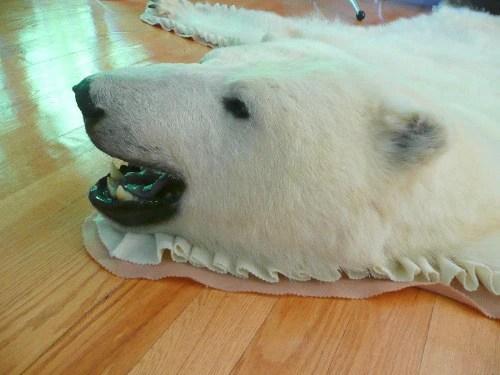 RESERVED Original Polar Bear Skin Rug  Inuit Sculptures Art Gallery