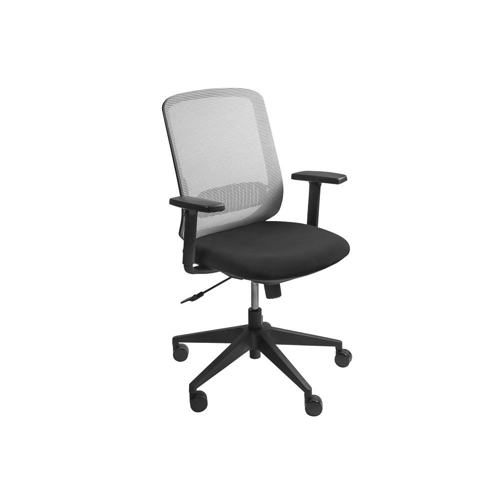 Low Back Office Chair Isaac Low Back Office Chair