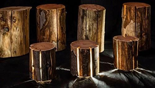 Tree Trunk Light  OddGiftscom