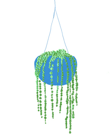 String of Pearls Plant | Illustration by Wren McMurdo