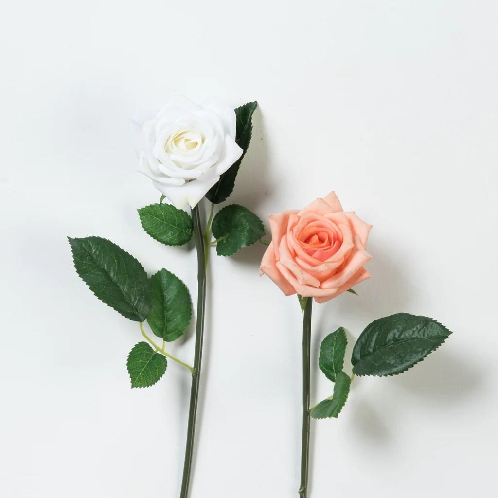 Rose Stem - Magnolia Chip & Joanna Gaines