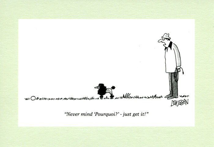 Humorous Card By Punch Poodle Never Mind Pourquoi