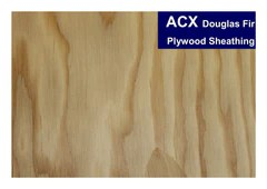 Arauco Acx Plywood