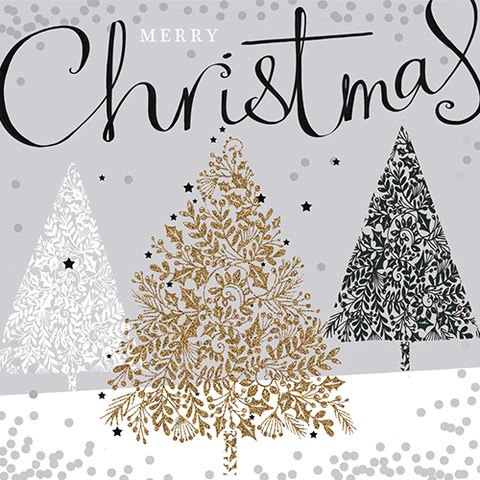 Charity Christmas Cards British Lung Foundation