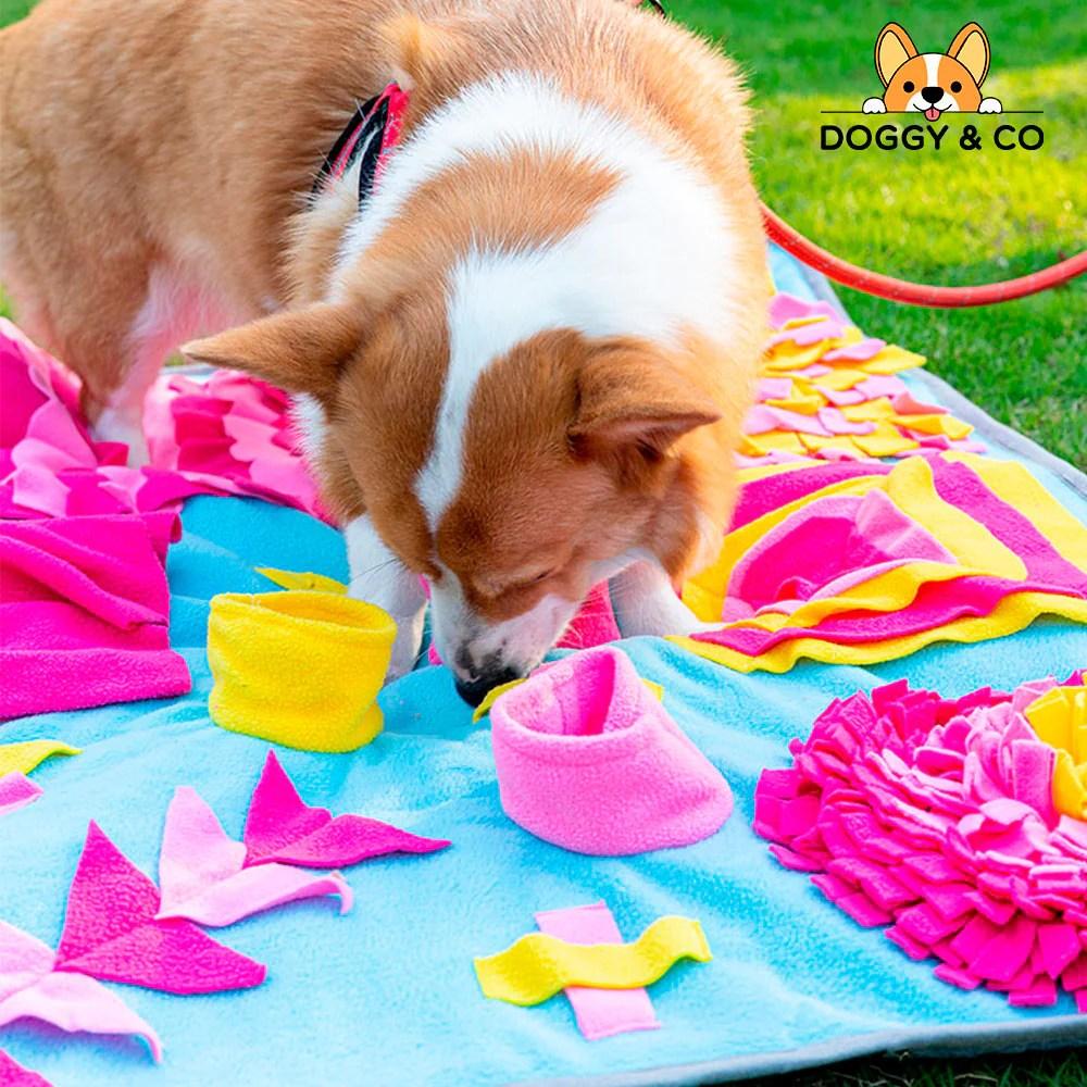 tapis de fouille et de jeu pour chien