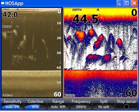 What do Bait Fish Look Like on a Fish Finder aka Bait