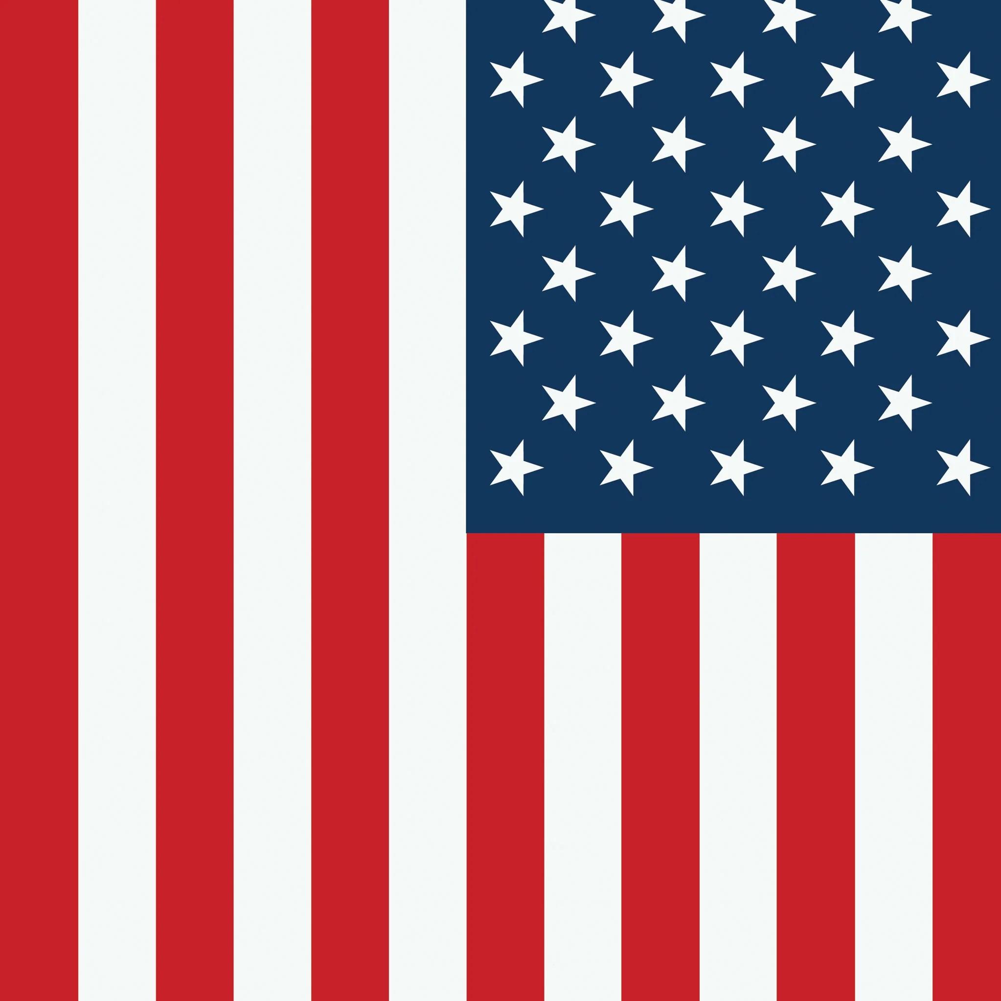 american flag photo backdrop
