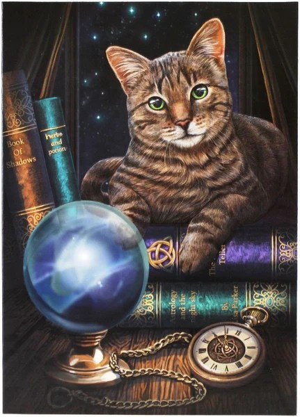 Black Kitty Wallpaper Tabby Cat Greeting Card Lisa Parker Fortune Telling Kitty