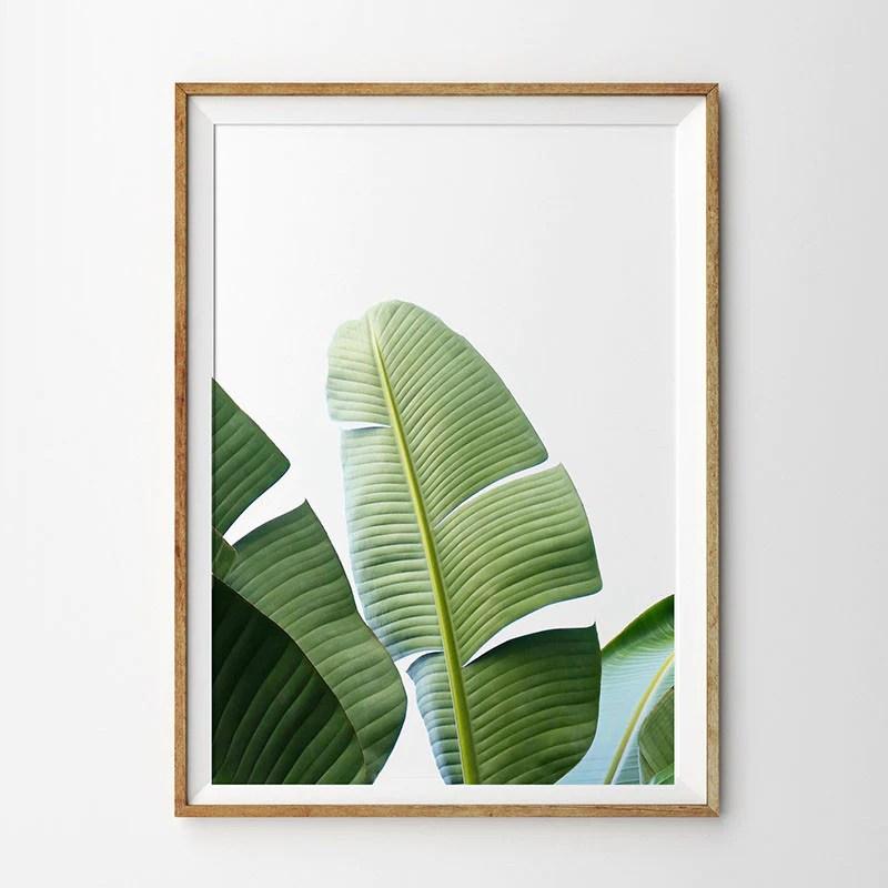 tropical botany minimalist nordic