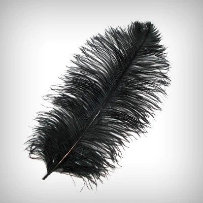 chair covers for sale nz grey louis ostrich & peacock feathers - my wedding store