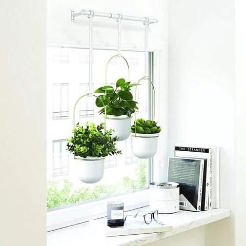 Modern Indoor Ceiling Hanging Flower Plants